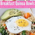 Sunny side up egg in bowl with quinoa, avocado and tomatoes