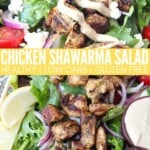 chicken shawarma salad in bowl topped with garlic tahini sauce