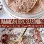jamaican jerk seasoning in bowl with gold spoon
