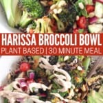 roasted broccoli in bowl with fresh vegetables and tahini sauce drizzled on top