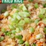fried rice in bowl topped with diced green onions